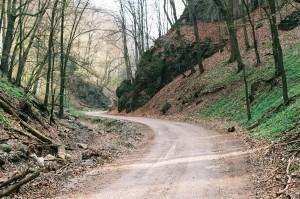 Sunday inspiration - winding road
